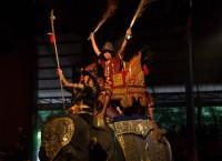 Elefantshow