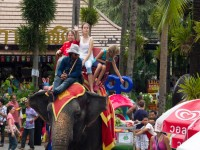 Her er vi på elefant tur