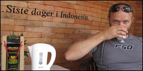 artikkel_indonesia